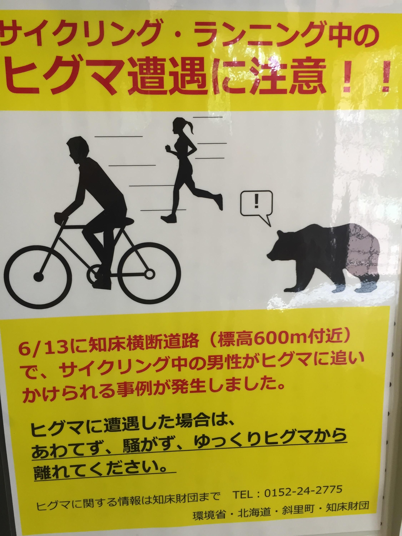 L'ours d'Hokkaido court moins vite que l'ours des Vosges mais est plus agressif.