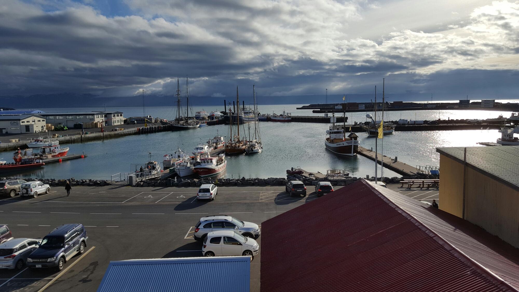 Husavik, capitale de la baleine